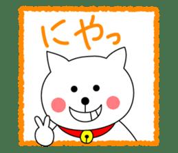 Cat named Shiro sticker #4784045
