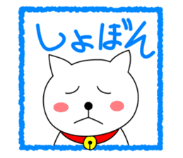Cat named Shiro sticker #4784058