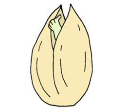 my Pistachio sticker #4793340