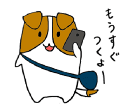 Close dog and cat sticker #4793861