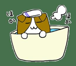 Close dog and cat sticker #4793882