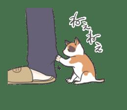 Cat and boy sticker #4819331