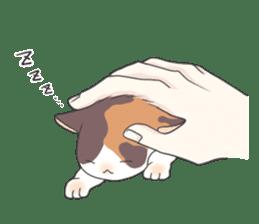 Cat and boy sticker #4819344