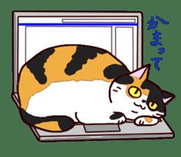 Syo-chan,calico cat sticker #4869478