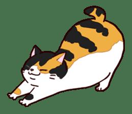 Syo-chan,calico cat sticker #4869479