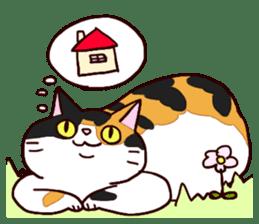 Syo-chan,calico cat sticker #4869486