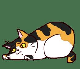 Syo-chan,calico cat sticker #4869491