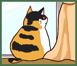 Syo-chan,calico cat sticker #4869492