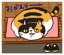 Syo-chan,calico cat sticker #4869493