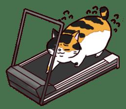 Syo-chan,calico cat sticker #4869498