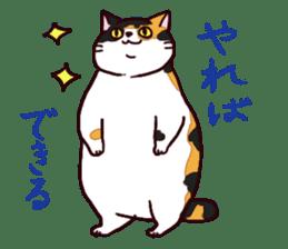 Syo-chan,calico cat sticker #4869499