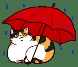 Syo-chan,calico cat sticker #4869502