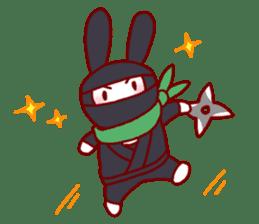 Every day rabbit sticker #4886629
