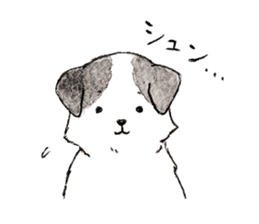 Black-and-white dogs sticker #4887382