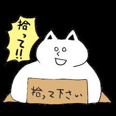 Fatty cat!