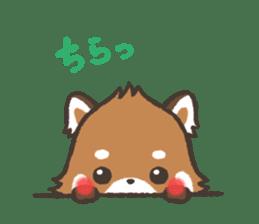 mild-Lesser-panda sticker #4908415
