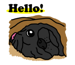 Cute & funny pug sticker #4927302