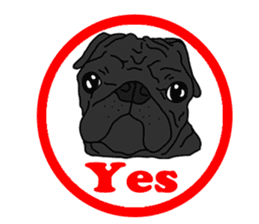 Cute & funny pug sticker #4927304