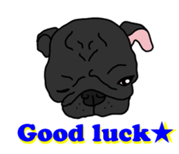 Cute & funny pug sticker #4927316