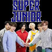 สติ๊กเกอร์ไลน์ Super Junior in Super TV