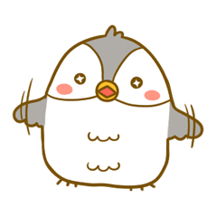 Bonjii the Owl