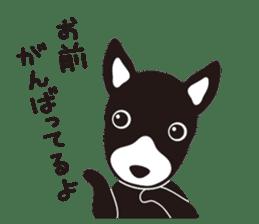 Miracle Train Tokugawa ver. sticker #4970577