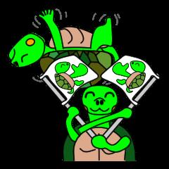 JIN-JIN Turtle Life