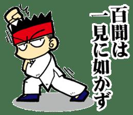 luohan quan shaolin kung fu sticker #5010555