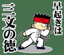 luohan quan shaolin kung fu sticker #5010557