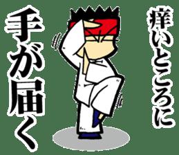 luohan quan shaolin kung fu sticker #5010568