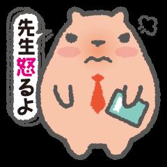 Capybara Teacher Mikiro