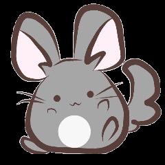 Chinchilla's Sticker