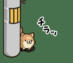 Plump dog Vol.1 sticker #5090467