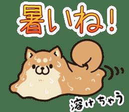 Plump dog Vol.1 sticker #5090475