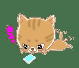 Of the kitten is nyan-suke 1 sticker #5103075