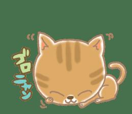 Of the kitten is nyan-suke 1 sticker #5103083