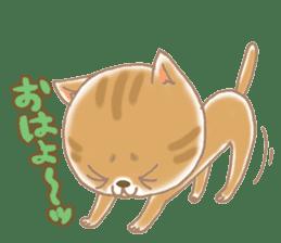 Of the kitten is nyan-suke 1 sticker #5103085