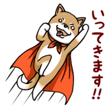 Cute! Funny dog and annoying cat sticker #5130998
