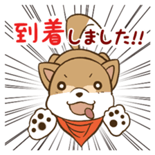 Cute! Funny dog and annoying cat sticker #5131002