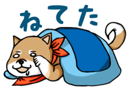 Cute! Funny dog and annoying cat sticker #5131006