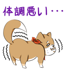 Cute! Funny dog and annoying cat sticker #5131009