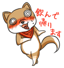 Cute! Funny dog and annoying cat sticker #5131010