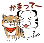 Cute! Funny dog and annoying cat sticker #5131036