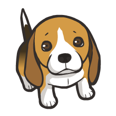 Hi! Beagle