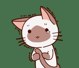 Siamese chan request sticker #5148564