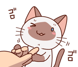 Siamese chan request sticker #5148575