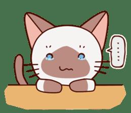 Siamese chan request sticker #5148596