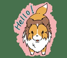 Cute sheltie sticker #5161812