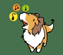 Cute sheltie sticker #5161814