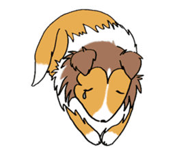 Cute sheltie sticker #5161818